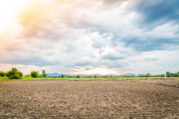 Landschaft der kultivierten boden