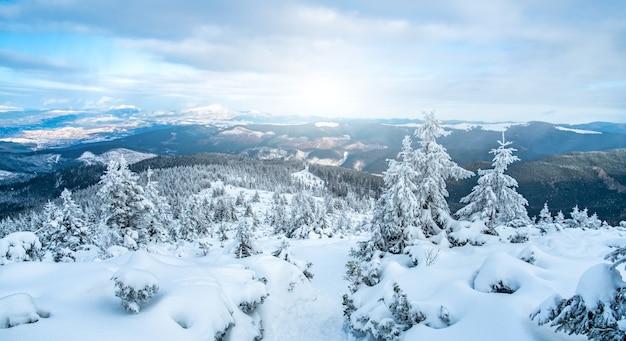 Landschaft der schneebedeckten bergkette unter wintersonne