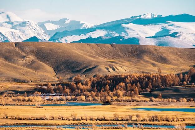Landschaft der steppe mit seen und bäumen