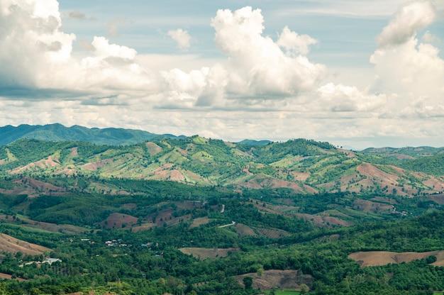 Landschaft der zerstörung des waldes auf bergen