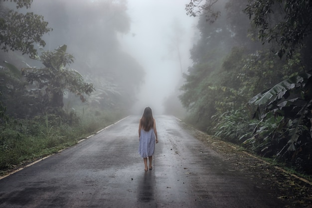 Landschaft des dichten nebels auf der straße und des schattenbildes des baums im winter