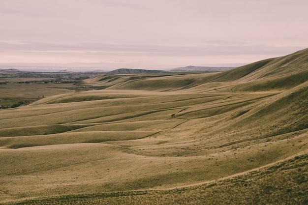 Landschaft des feldes bedeckt im gras unter dem sonnenlicht am abend