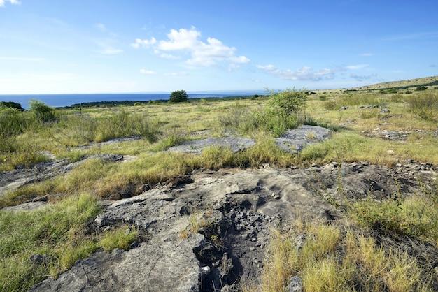 Landschaft des grünen grases und der felsen auf der klippe mit meerblick