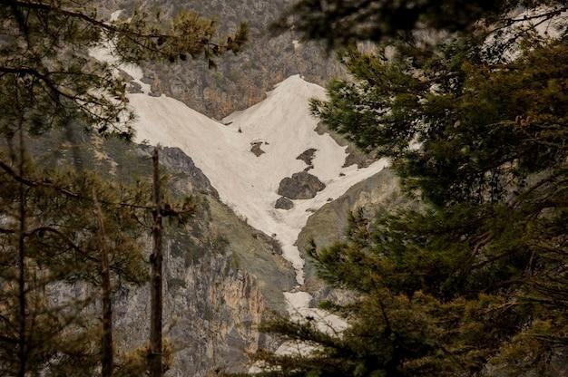 Landschaft des hügels mit schnee bedeckt