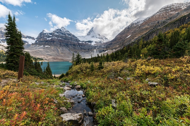 Landschaft des mount assiniboine mit lago magog im herbstwald
