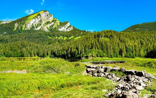 Landschaft des oberseetals im kanton glarus, schweiz