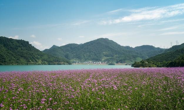 Landschaft des qiandao-sees in hangzhou