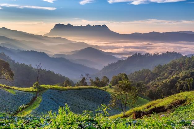 Landschaft des sonnenaufgangs auf berg bei doi luang chiang dao, chiangmai thailand