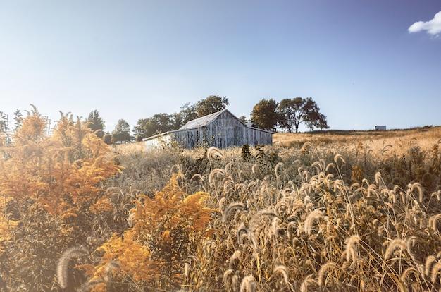 Landschaft einer wiese mit einem alten holzhaus unter einem blauen himmel