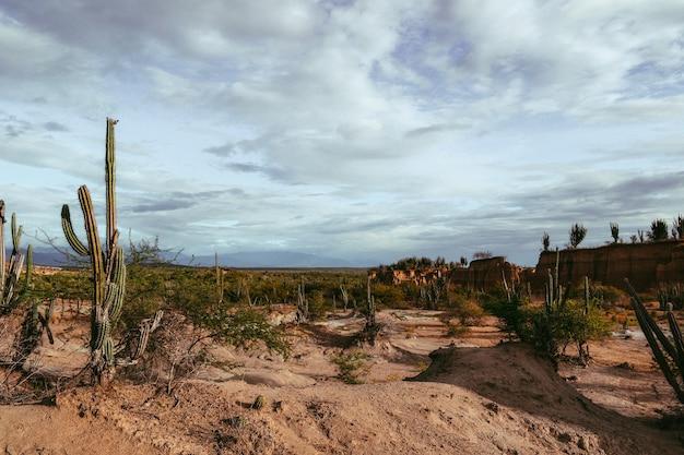 Landschaft einer wüste