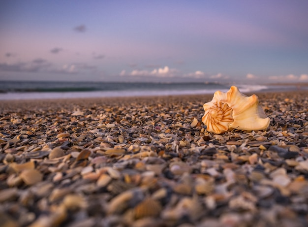 Landschaft eines atemberaubenden sonnenuntergangs der strand in ostflorida