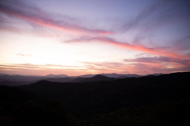 Landschaft eines schönen waldes