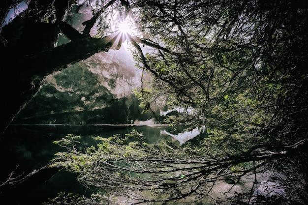 Landschaft gewässer