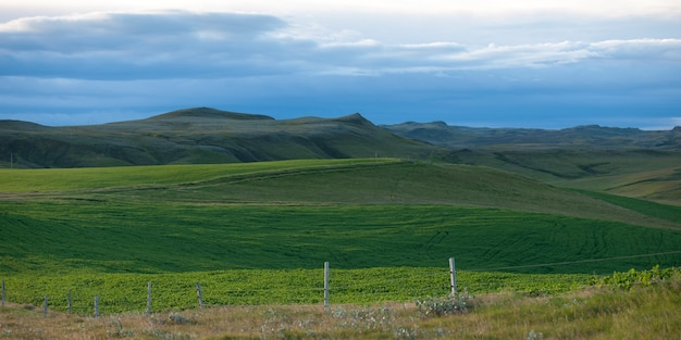Landschaft, grünes ackerland, hügelige landschaft