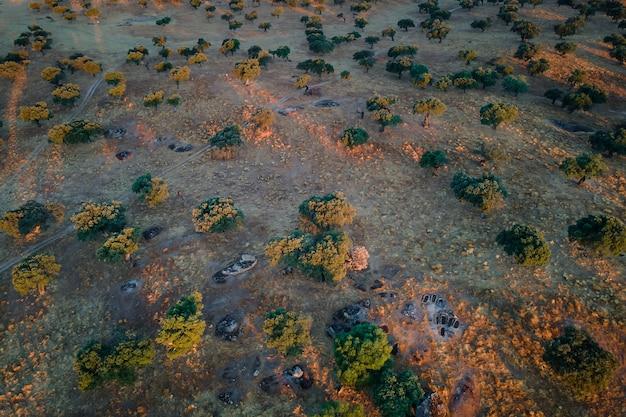 Landschaft in dehesa de la luz. die gräber sind archäologische überreste des iv. jahrhunderts n. chr..