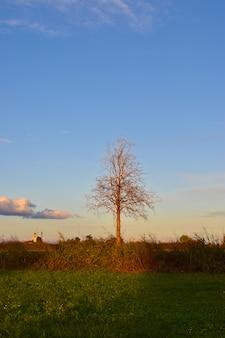 Landschaft landschaft