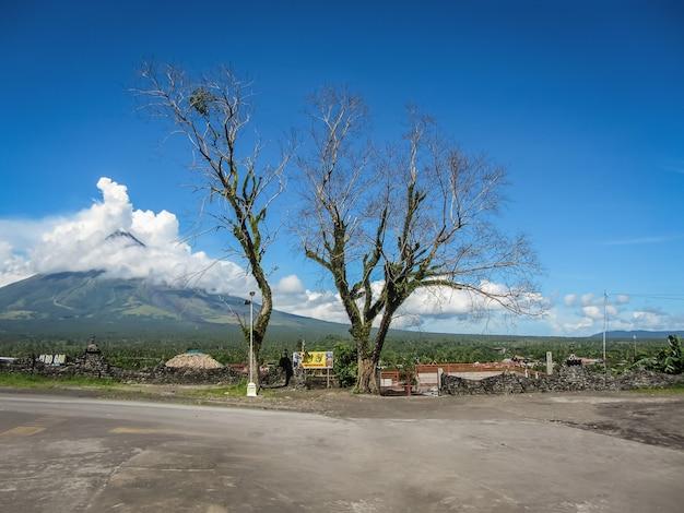 Landschaft mit alten bäumen durch die straße und einen vulkan in indonesien.