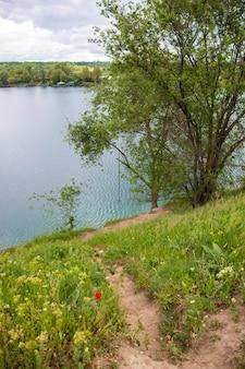 Landschaft mit bungee auf einem baum am see