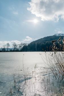 Landschaft mit einem zugefrorenen see und bergen mit kiefern