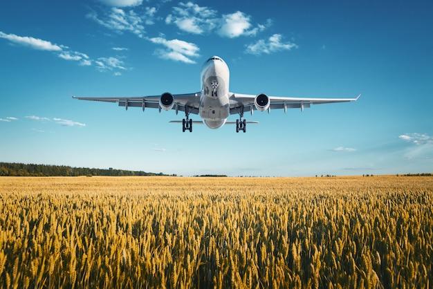 Landschaft mit großem weißen passagierflugzeug
