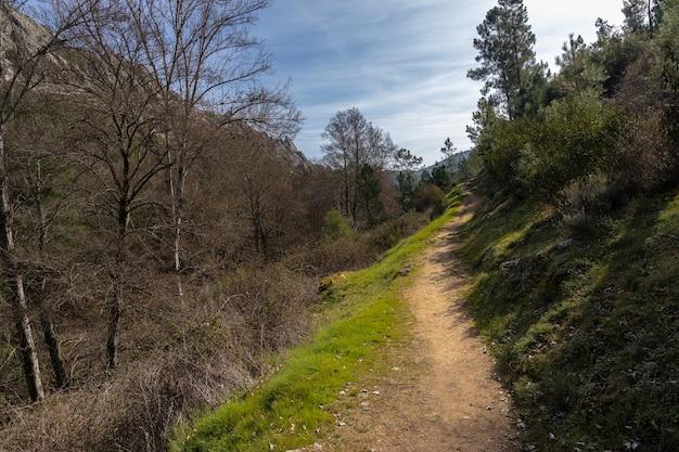 Landschaft mit ländlichem weg nahe canamero.