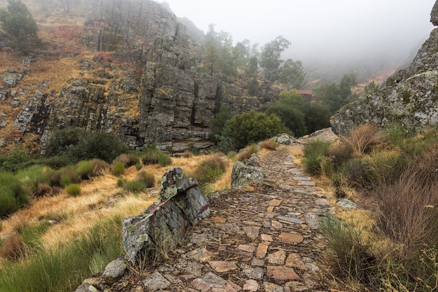 Landschaft mit nebel in penha garcia. portugal.
