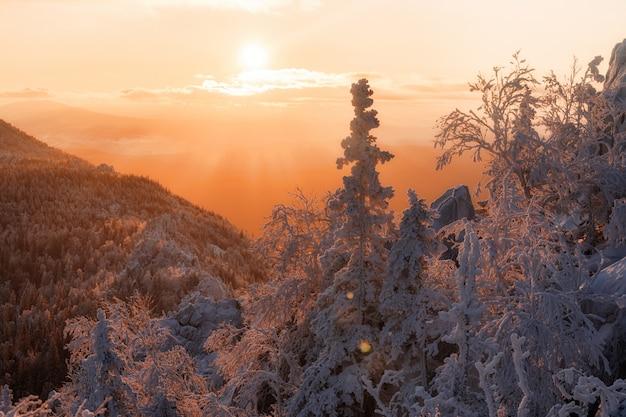 Landschaft mit winterwald und hellen sonnenstrahlen. sonnenaufgang, sonnenuntergang im kalten verschneiten wald