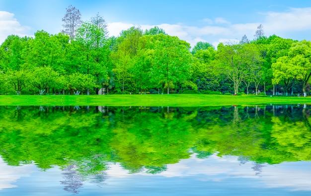 Landschaft sommer form parks naturprodukte reflexion
