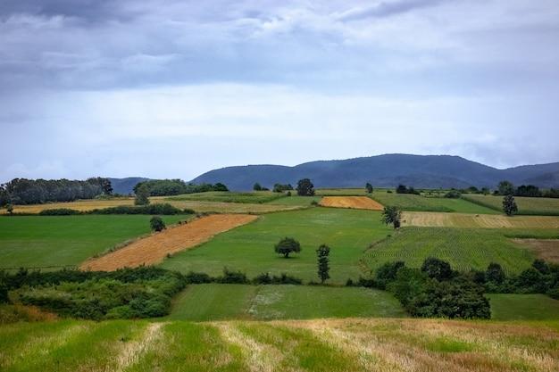 Landschaft von feldern in einem dorf, umgeben von hügeln, die mit wäldern unter einem bewölkten himmel bedeckt sind