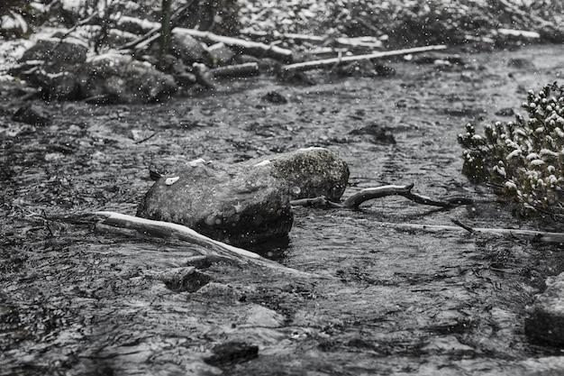 Landschaft von gebirgsflüssen im winter
