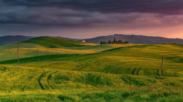 Landschaft von hügeln bedeckt im grünen während eines schönen sonnenuntergangs