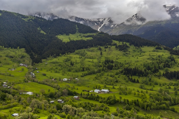 Landschaft von hügeln bedeckt mit wäldern und nebel unter dem bewölkten himmel