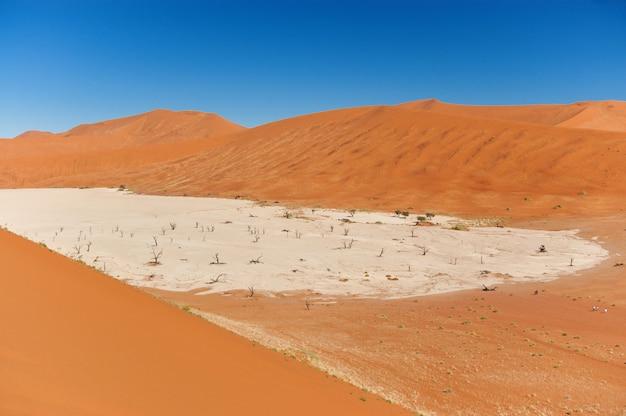 Landschaft von totem vlei, sossusvlei, namibische wüste, namibia, südafrika