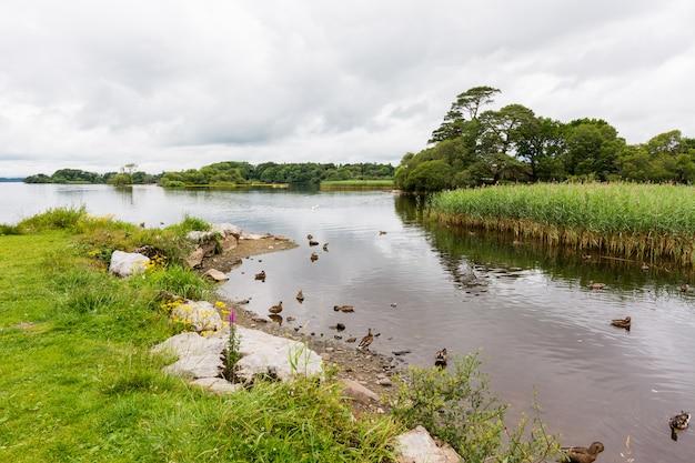 Landschaften irlands. killarney nationalpark