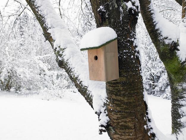 Landschaftliche schönheit und spaß im winter