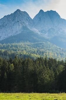 Landschaftsansicht bayerische alpen, deutschland, europa