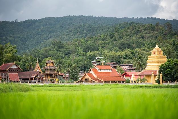 Landschaftsansicht des grünen reisfeldes mit altem tempel in goldener pagode und im berg thailands