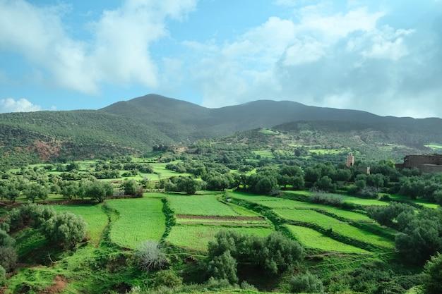 Landschaftsansicht des landwirtschaftsfeldes gegen berg und ky