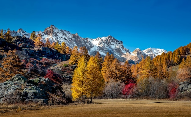 Landschaftsansicht von bergen bedeckt mit schnee und herbstbäumen