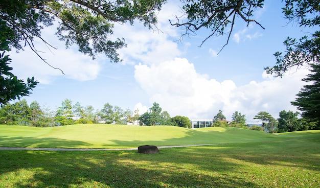 Landschaftsansichten des grünen gartens und des himmels und des wolkenhintergrunds.