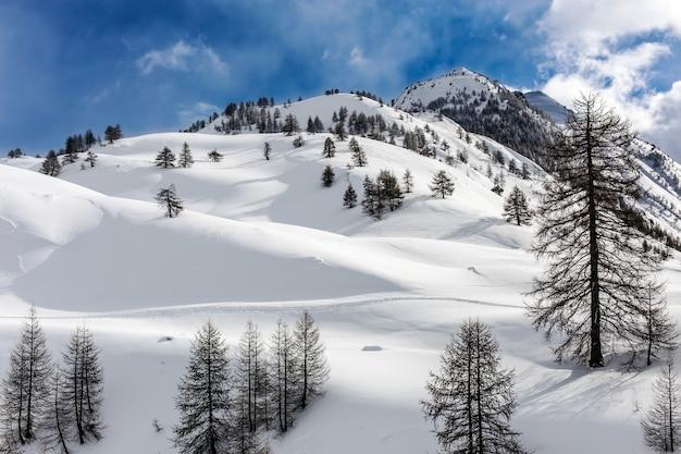 Landschaftsaufnahme der hügel im piemont italien
