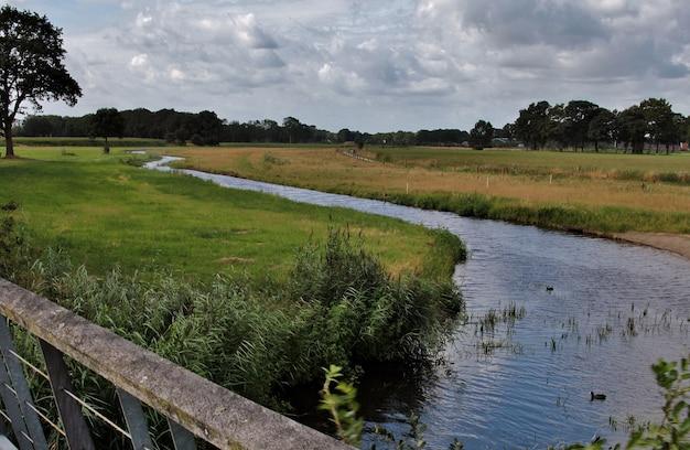 Landschaftsaufnahme eines flusses, der durch ein grünes feld fließt