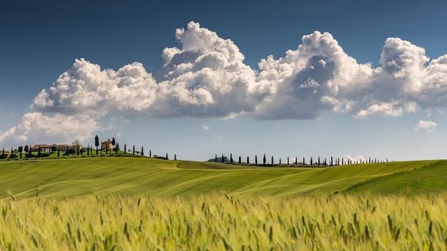Landschaftsaufnahme von val d'orcia toskana italien mit einem bewölkten sonnigen blauen himmel