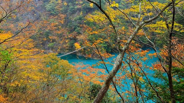Landschaftsblick herbstlaub und regenzeit und smaragdgrünes wasser mitten im tal in japan