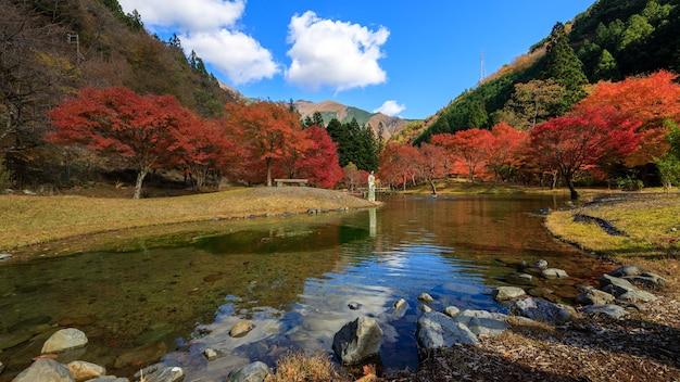 Landschaftsblick weitwinkel der park herbstlaub im tal und blauer himmel, kleines junges mädchen mit kimono stehend in der wasserfront in japan
