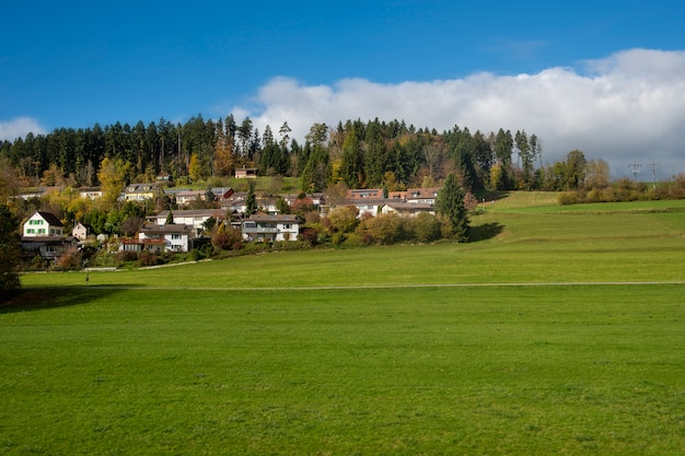 Landschaftsfeld mit blauem himmel