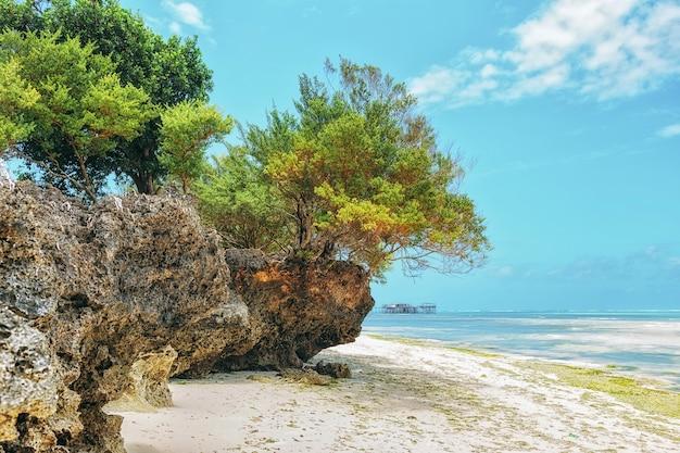 Landschaftsparadies-tropeninselstrandsonnenaufgangschuß
