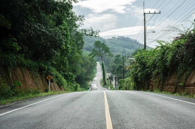 Landschaftsstraße mit grünem wald