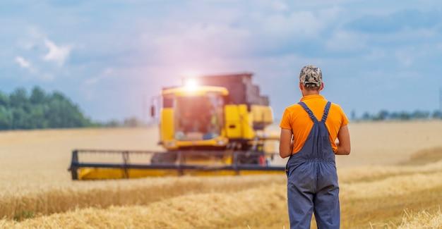 Landwirt beobachtet den ernteprozess. kombinieren sie arbeiten im feld. trockenweizen und ländliche landschaft.