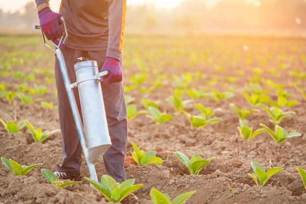Landwirt, der auf dem gebiet arbeitet und düngemittel gibt, indem er werkzeug in den boden gräbt
